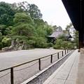 Photos: 鶴亀の庭 2