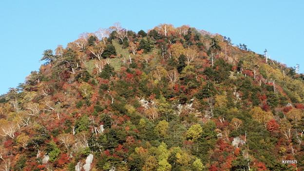 日光白根山 山腹の紅葉