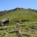 小田越コースから見上げた早池峰山