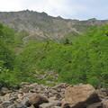 Photos: あの岸壁に登山道がある