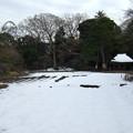 写真: 雪に覆われた花菖蒲田と稲田