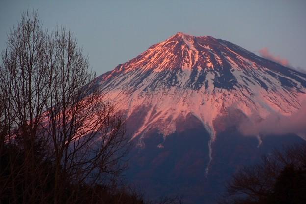 2月23日富士山の日富士宮からの夕方富士山~ ちょっとピンクです(^ ^)