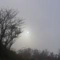 Photos: 雲の中の太陽