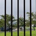 写真: フェンスの向こうはアメリカ