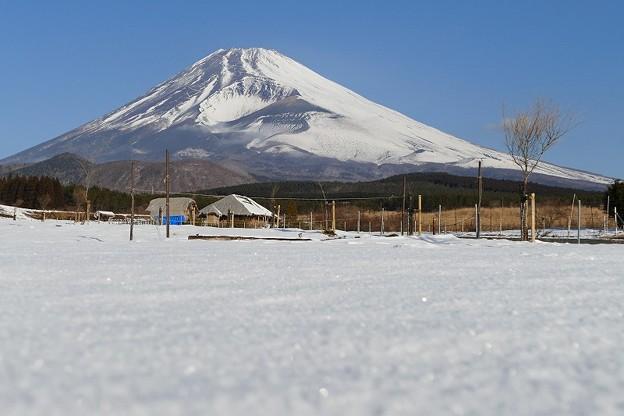 Photos: 冬山っぽいかな・・・No.02