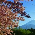 2019/03/09・・・春に三日のはれなしNo.01