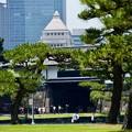 Photos: 2019/05/26・・・銀ブラNo.10