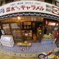 ドールハウス 朝日商店