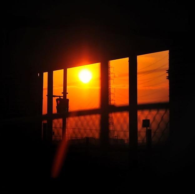 輝く夕日 ♪