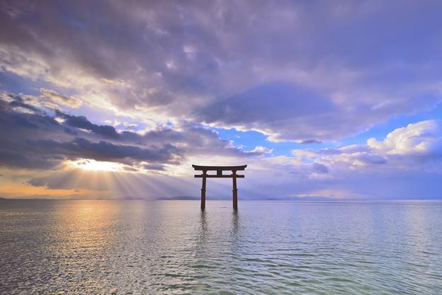 琵琶湖 白鬚神社。