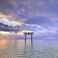 Photos: 琵琶湖|白鬚神社。