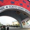 Photos: 東京ディズニーリゾート