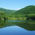 Photos: 貯水池