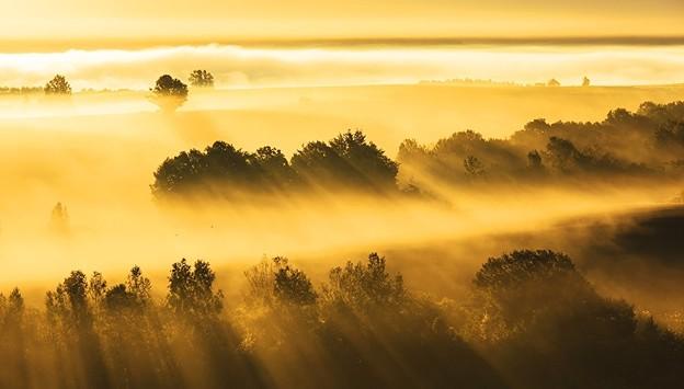 Photos: Golden.hour