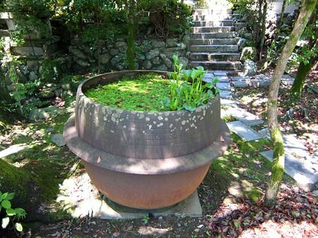 多賀神社14