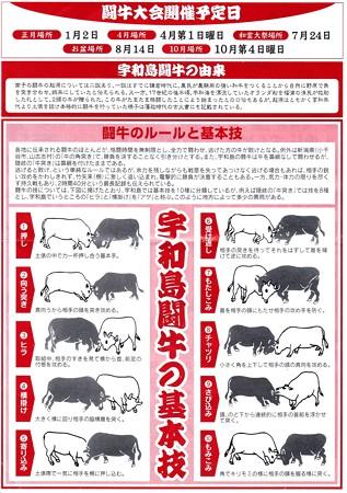 宇和島闘牛の基本技
