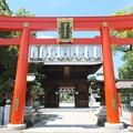 写真: 椿神社01 鳥居―赤地に十六八重表菊は天皇旗?