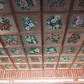 写真: 椿神社08 天井は椿だらけ