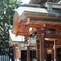 Photos: 椿神社12 見事な形状「産す」造り