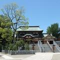 Photos: 椿神社15 おや、ニコニコと手を振っている?