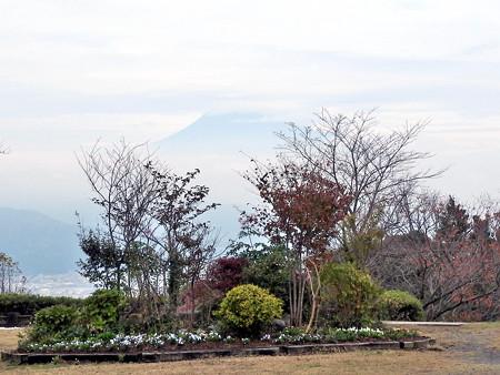 日本平05