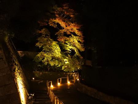 知恩院(ライトアップ)29