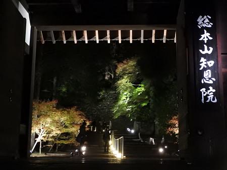知恩院(ライトアップ)31