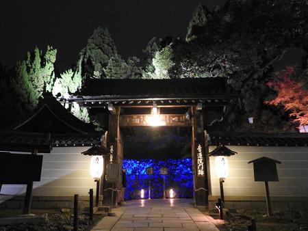 青蓮院門跡(ライトアップ)01