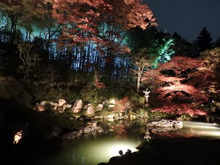 青蓮院門跡(ライトアップ)15 築山泉水庭