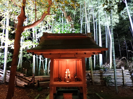 青蓮院門跡(ライトアップ)31 日吉社