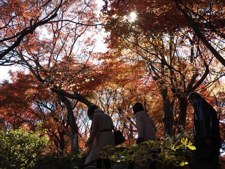東福寺50
