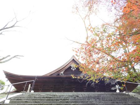 三井寺10 金堂