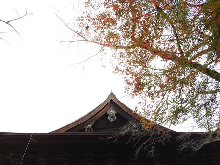 三井寺11 金堂