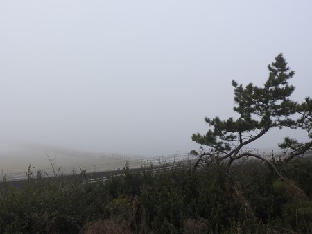 霧の朝 幕張海岸01