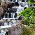 公園内を流れている小川:IMG_0085_R01