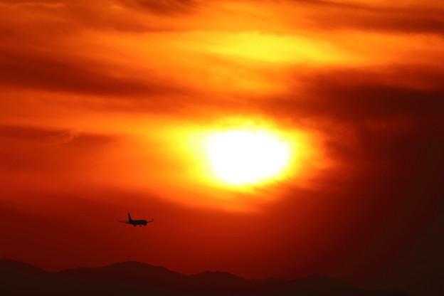 夕日に向かって:IMG_0033_R01