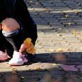 写真: イチョウの葉っぱ01