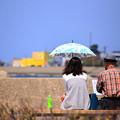 写真: 父と娘の距離