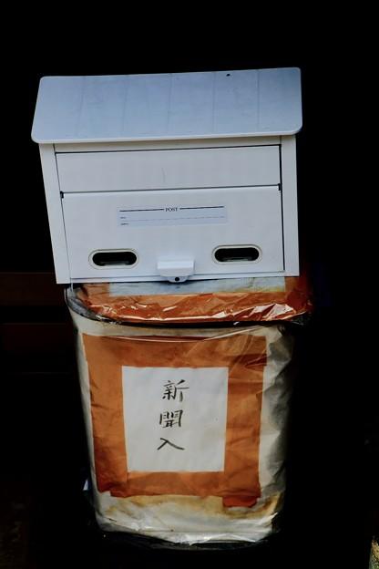 Photos: ほほ笑み