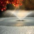 写真: 噴水もちょっぴり赤く