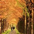 金沢太陽が丘 03