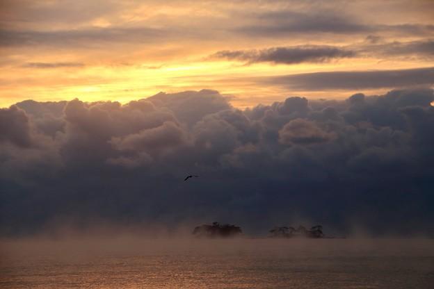 Photos: お山は雲の中