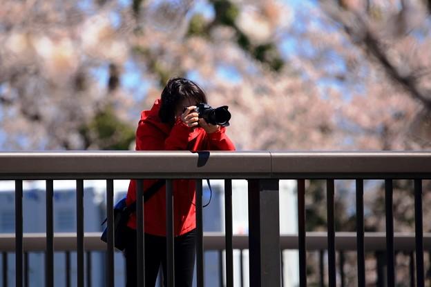 撮るを撮る 01