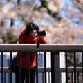 Photos: 撮るを撮る 01