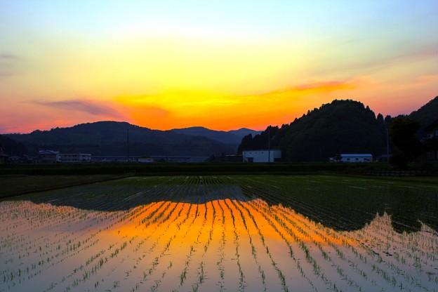 田舎の夕景