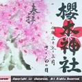 櫻木神社さくらの日限定特別御朱印