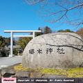 櫻木神社の鳥居