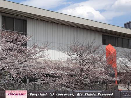 窓の外は桜