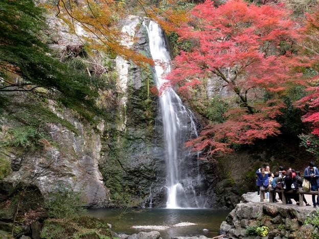 Photos: 紅葉の大滝