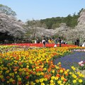 Photos: 春の陽気に誘われて